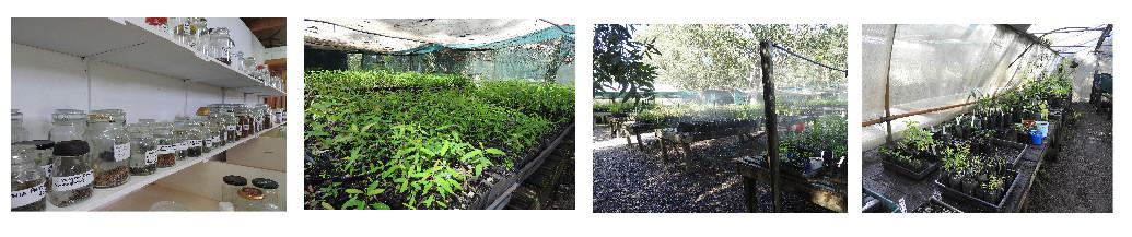 Habitat Nursery