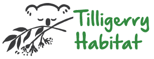 Tilligerry Habitat Reserve