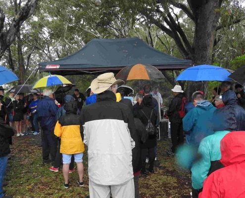 Mambo wetlands protest